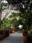 Hotelv6