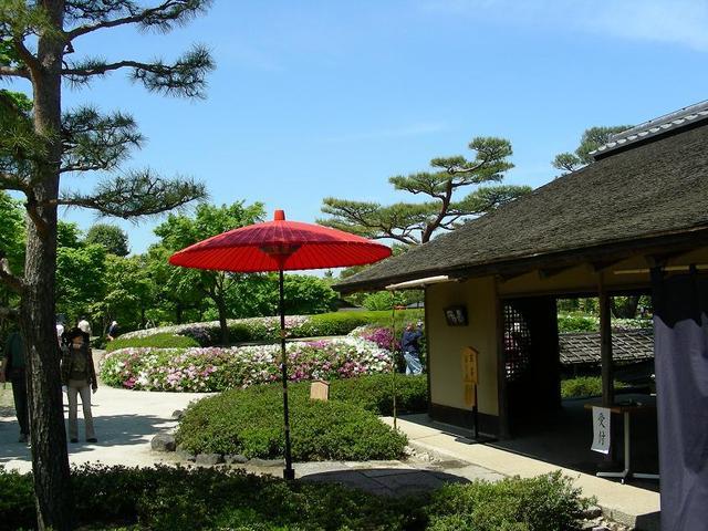 日本庭園のお茶席