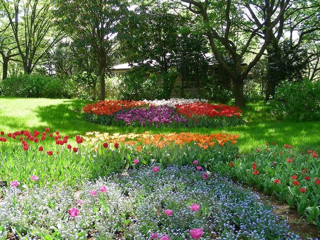 木洩れ日の中の花壇